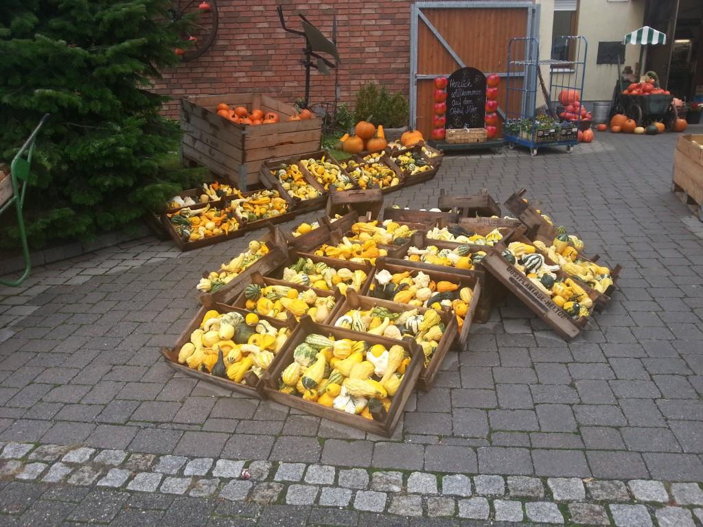 2013-10-11_Siebengebirge_Bauernhof Mohr